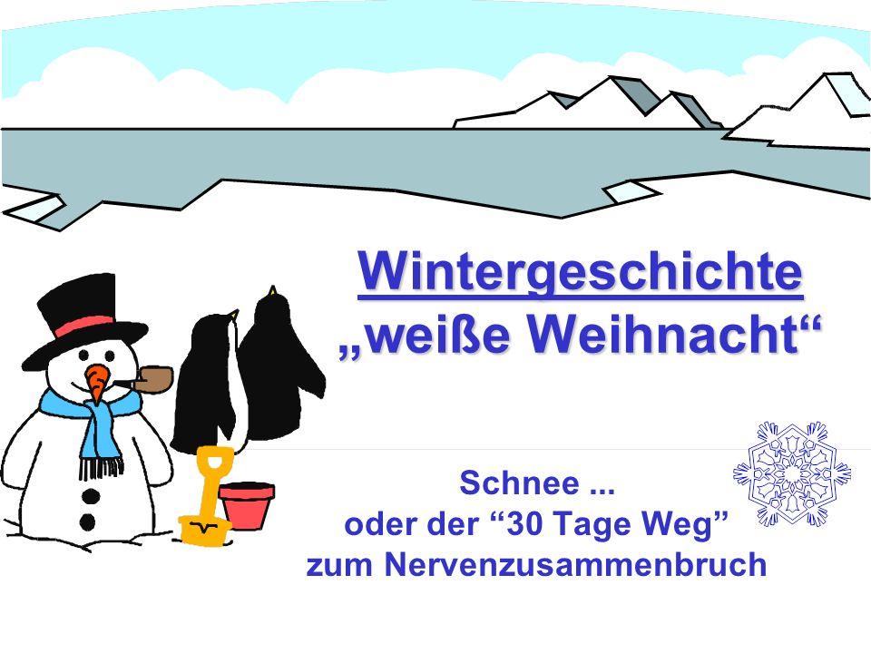 Wintergeschichte weiße Weihnacht Schnee... oder der 30 Tage Weg zum Nervenzusammenbruch
