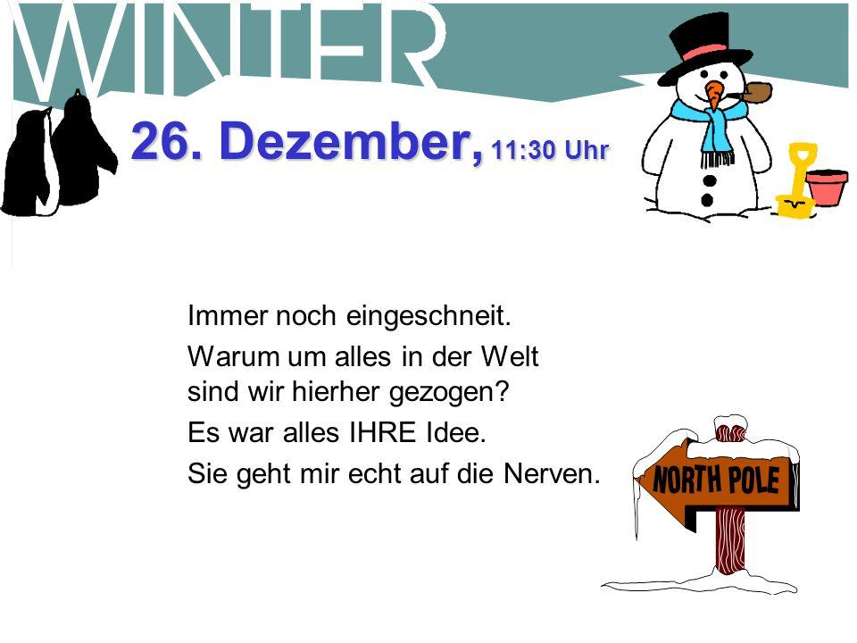 25. Dezember, 15:30 Uhr Dann kam der Schneepflugfahrer vorbei und hat nach einer Spende gefragt. Ich hab ihm meine Schaufel über den Kopf gezogen. Mei