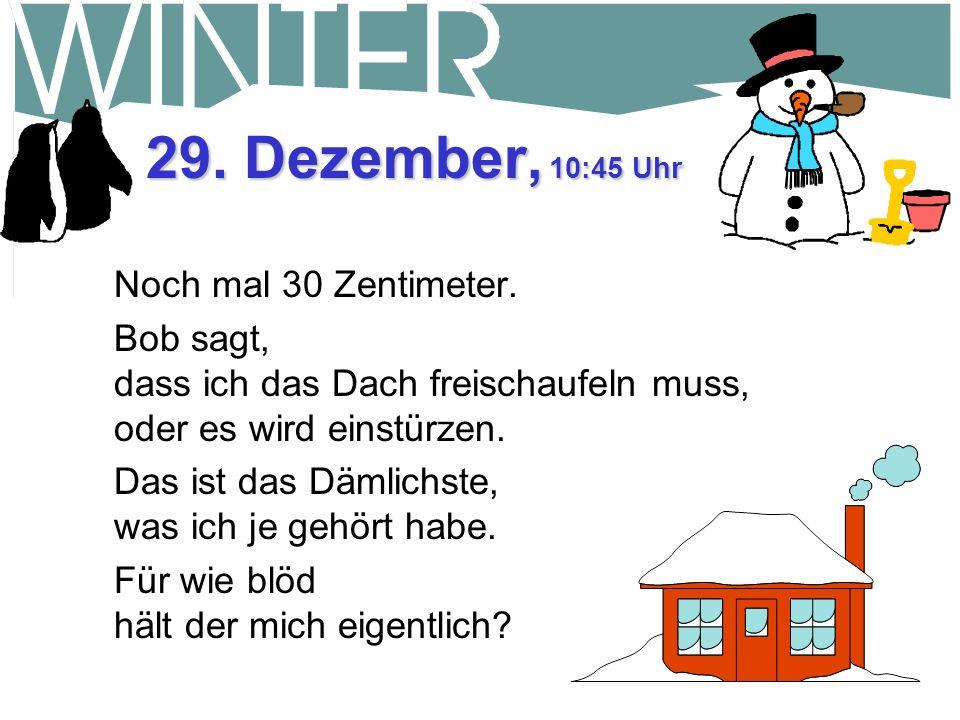 28. Dezember, 11:30 Uhr Es hat sich auf -5 Grad erwärmt. Immer noch eingeschneit. Die Alte machte mich verrückt!