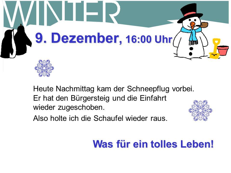 Was für ein tolles Leben.9. Dezember, 16:00 Uhr Heute Nachmittag kam der Schneepflug vorbei.
