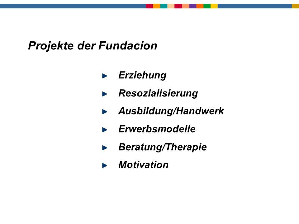 Projekte Erziehung Resozialisierung Ausbildung/Handwerk Erwerbsmodelle Beratung/Therapie Motivation Projekte der Fundacion