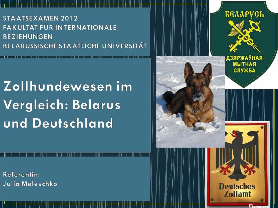 1)Struktur des Zollhundewesens in der Republik Belarus und in Deutschland 2)Ausbildung der Diensthunde und ihrer Führer in Belarus und in Deutschland 3) aktuelle Probleme des Zollhundewesens und Verbesserungsvorschläge