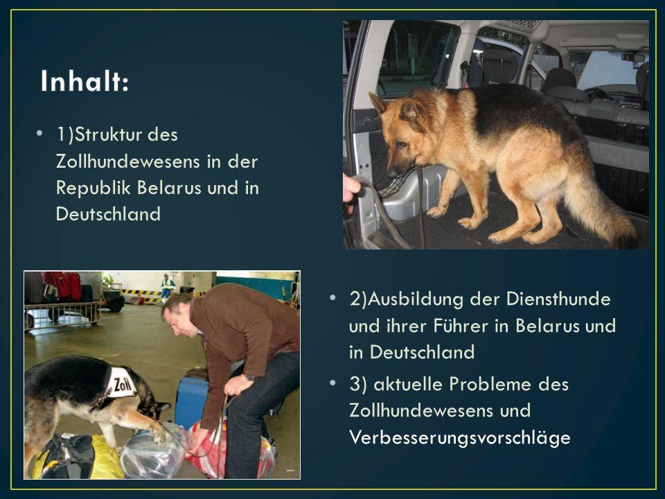 1)Struktur des Zollhundewesens in der Republik Belarus und in Deutschland 2)Ausbildung der Diensthunde und ihrer Führer in Belarus und in Deutschland
