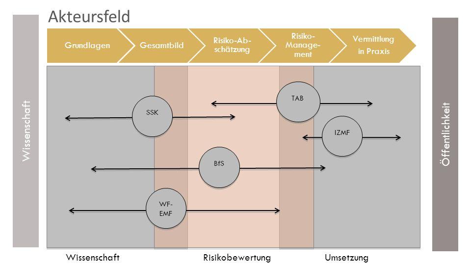 Übersicht EMF-Debatte Risiko und Unsicherheit EMF-Risikoabschätzung Quellen von Unsicherheit Experimentelle TA