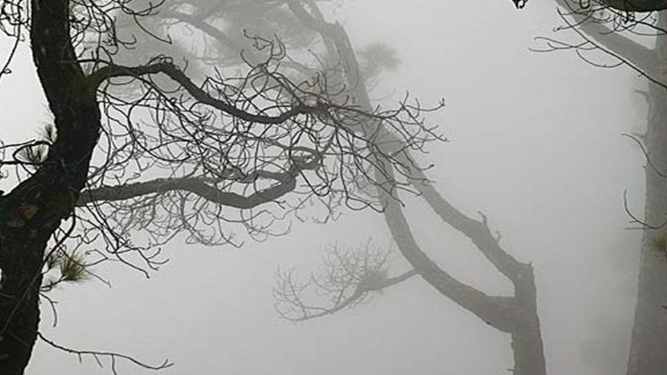 Graue Tage sind mitunter, als wären alle Fäden abgeschnitten...
