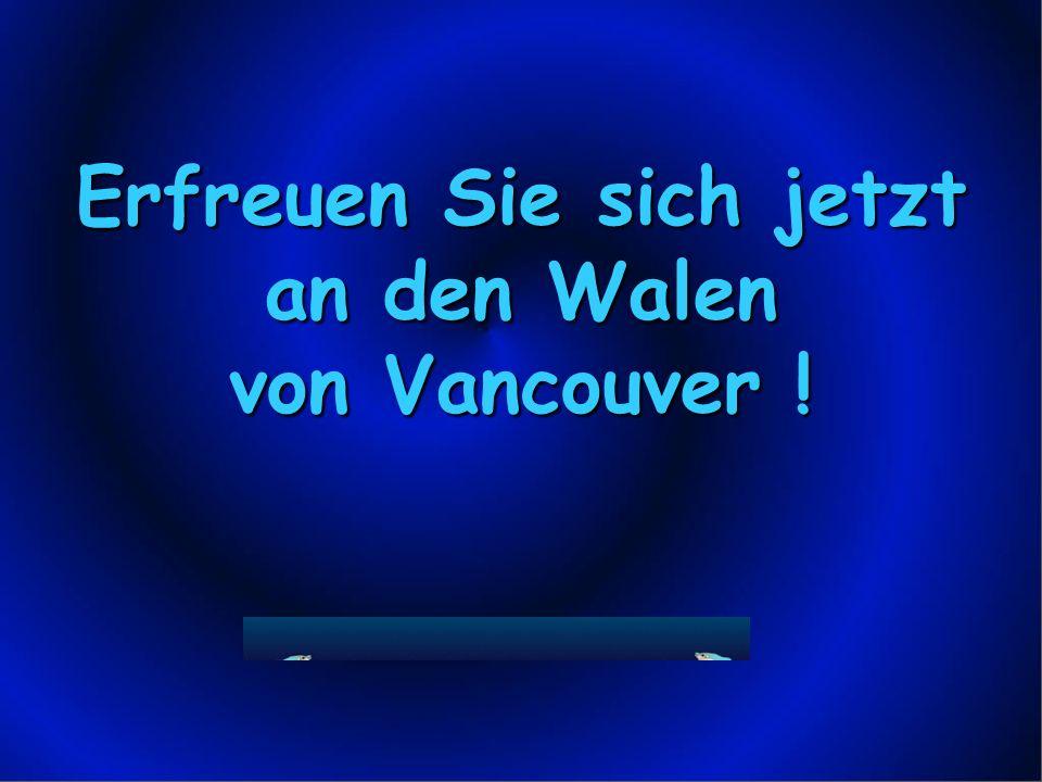Erfreuen Sie sich jetzt an den Walen von Vancouver !