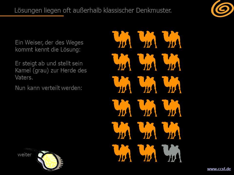 www.ccsf.de Ein Weiser, der des Weges kommt kennt die Lösung: Er steigt ab und stellt sein Kamel (grau) zur Herde des Vaters. Nun kann verteilt werden