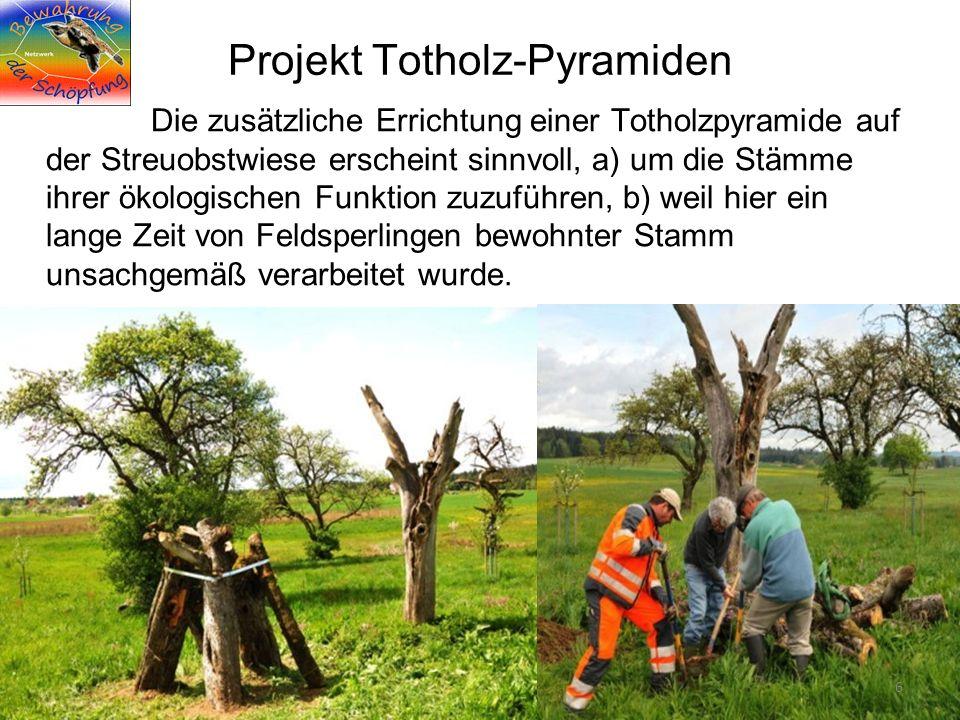 Was wird wann wie streng geschützt .06.01.2012 Projekt Totholz-Pyramiden 7 11.5.
