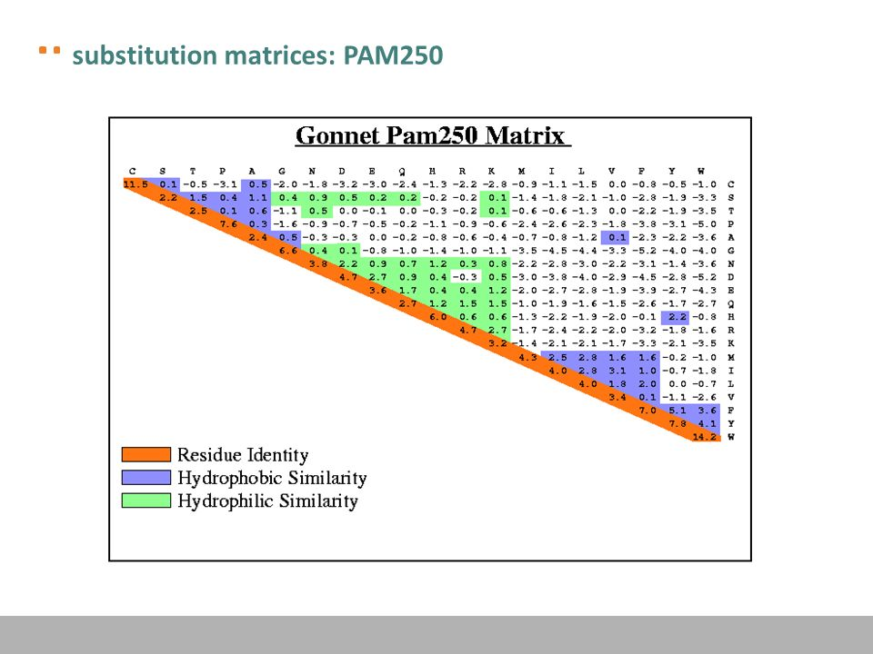 substitution matrices: PAM250