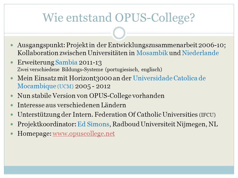 Wie entstand OPUS-College.