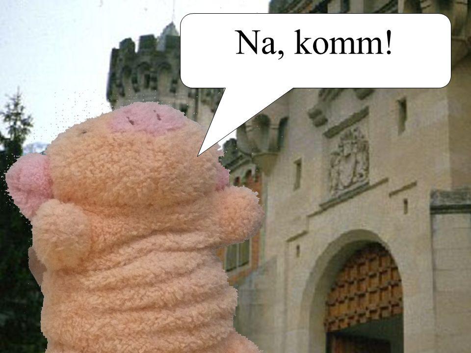 Schloss Neuschweinstein Komm raus!!!