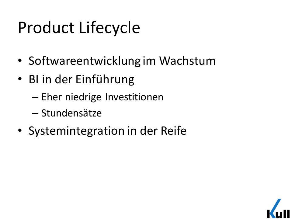Product Lifecycle Softwareentwicklung im Wachstum BI in der Einführung – Eher niedrige Investitionen – Stundensätze Systemintegration in der Reife