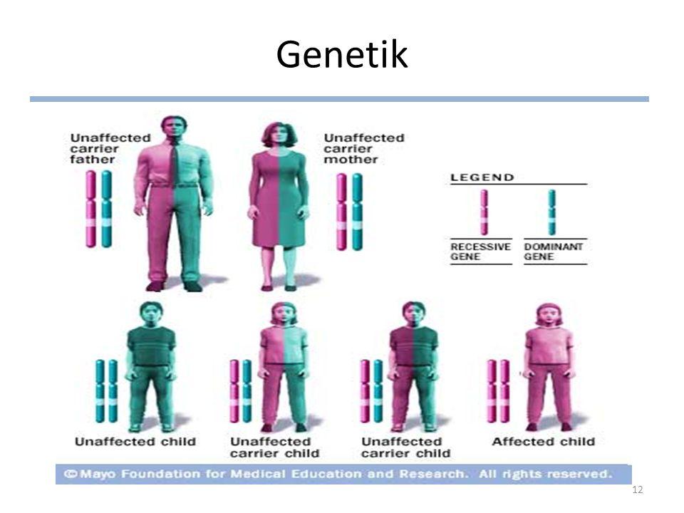 Genetik 12