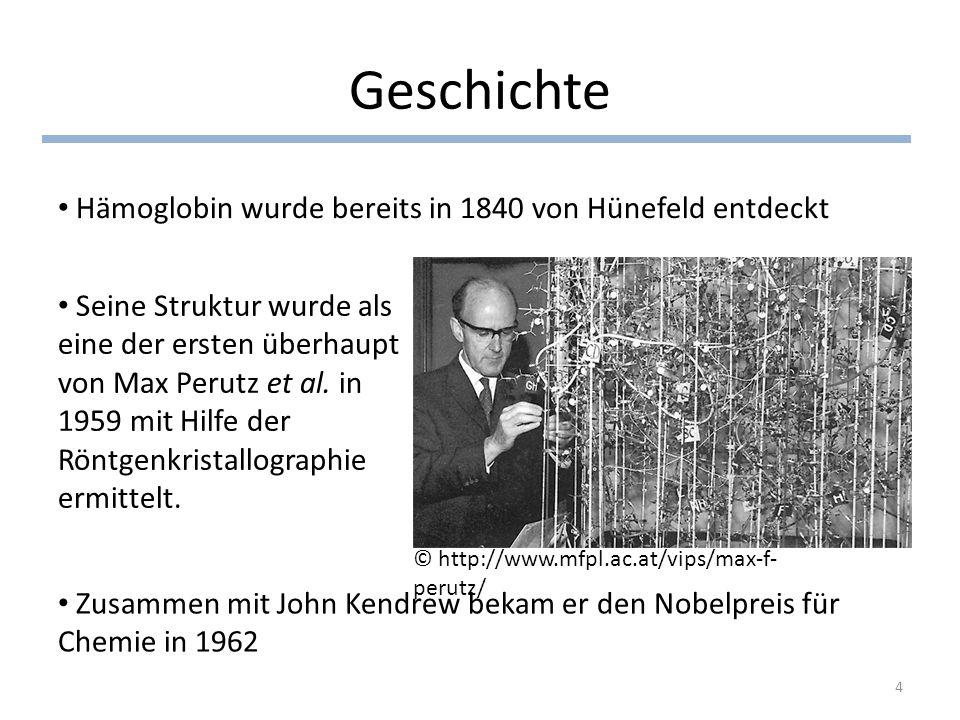 Geschichte Hämoglobin wurde bereits in 1840 von Hünefeld entdeckt Seine Struktur wurde als eine der ersten überhaupt von Max Perutz et al. in 1959 mit