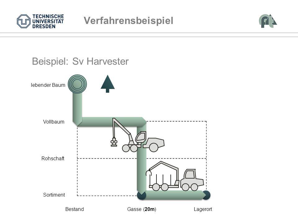 Vollbaum Rohschaft Sortiment BestandGasse (20m)Lagerort lebender Baum Beispiel: Sv Harvester Verfahrensbeispiel