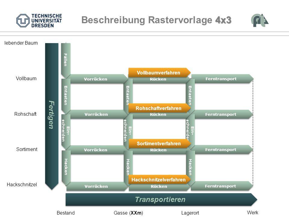 Verfahrensbeispiel Vollbaum Rohschaft Sortiment BestandGasse (XXm)Lagerort lebender Baum Werk Hackschnitzel