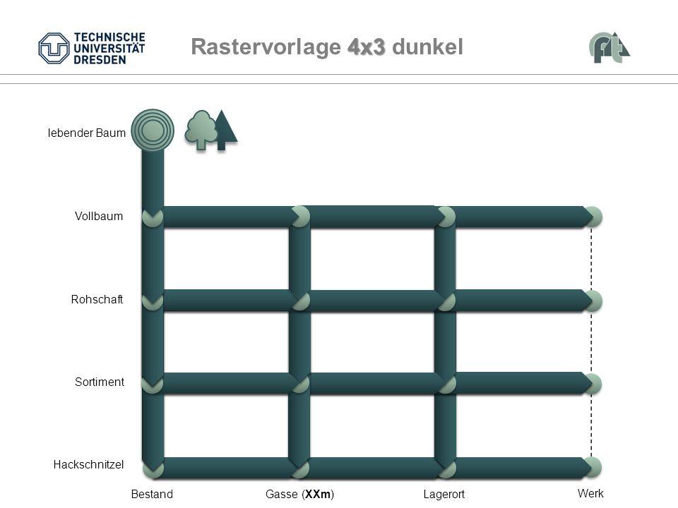 Vollbaum Rohschaft Sortiment BestandGasse (XXm)Lagerort lebender Baum Werk Hackschnitzel 4x3 Rastervorlage 4x3 dunkel