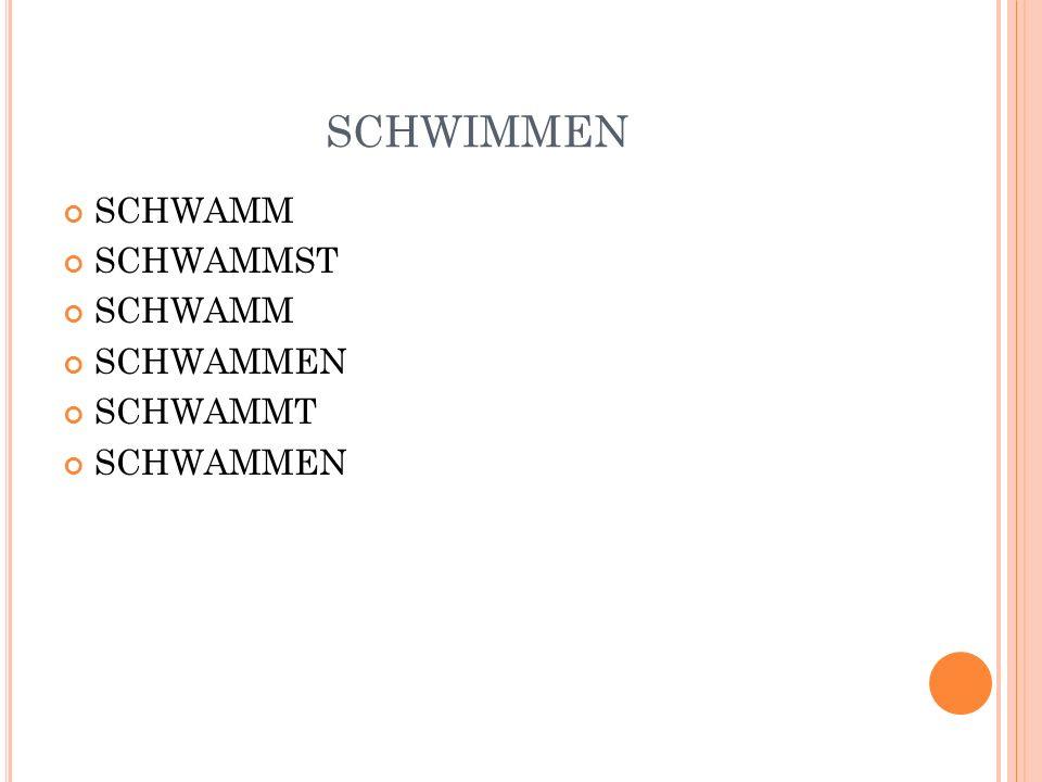 SCHWIMMEN SCHWAMM SCHWAMMST SCHWAMM SCHWAMMEN SCHWAMMT SCHWAMMEN