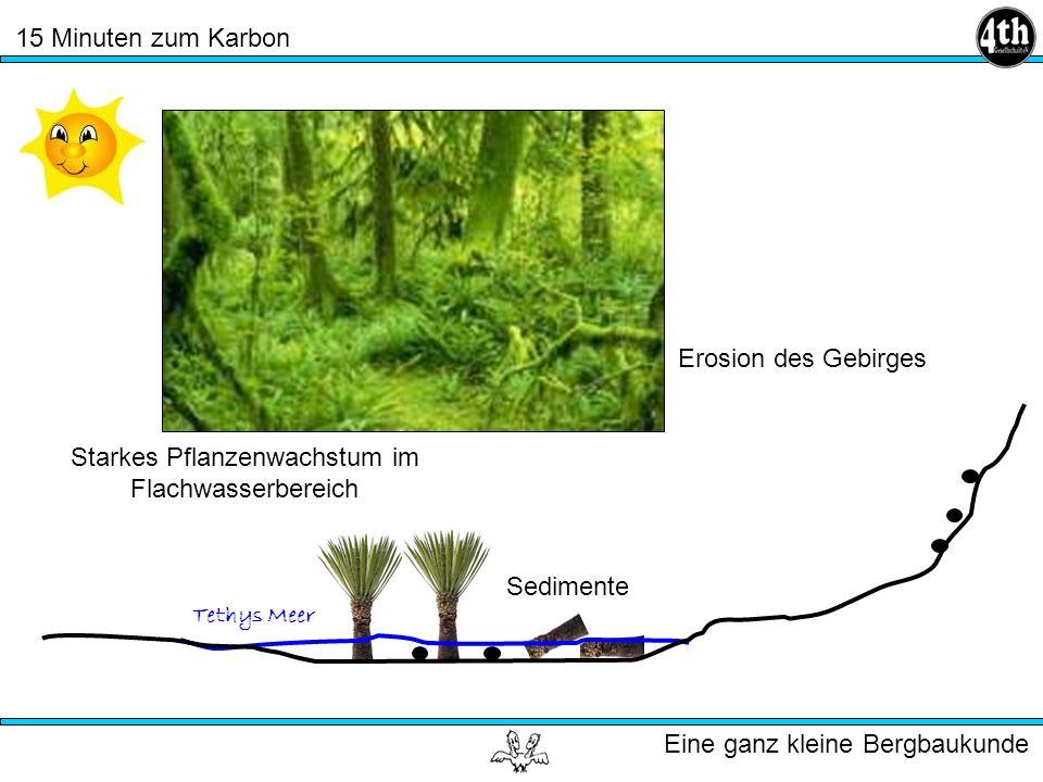 15 Minuten zum Karbon Eine ganz kleine Bergbaukunde Tethys Meer Starkes Pflanzenwachstum im Flachwasserbereich Erosion des Gebirges Sedimente