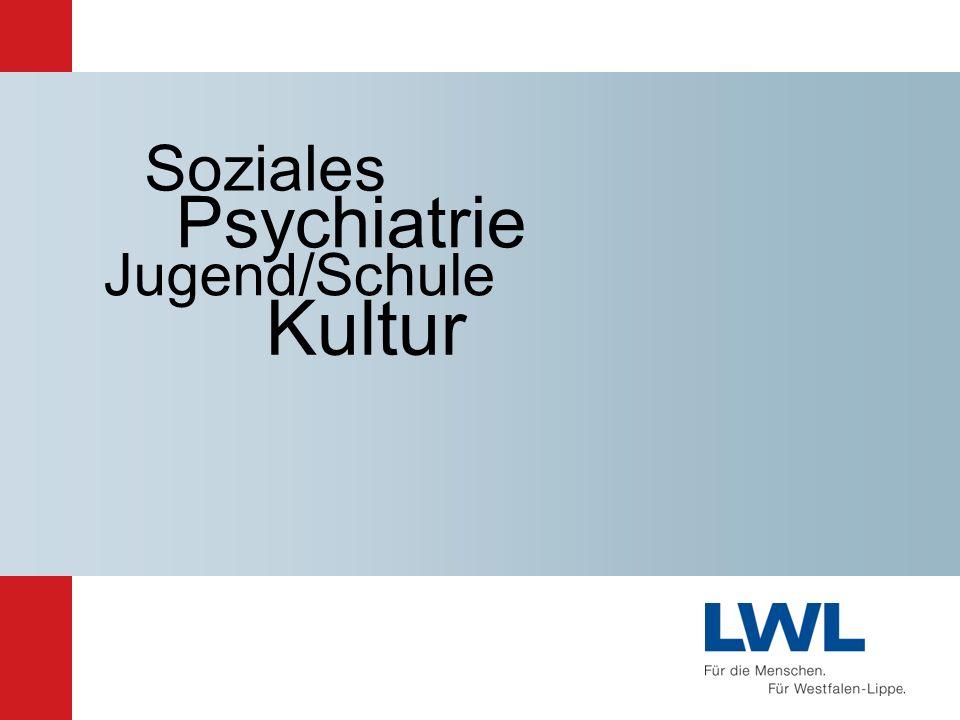 Soziales Psychiatrie Jugend/Schule Kultur