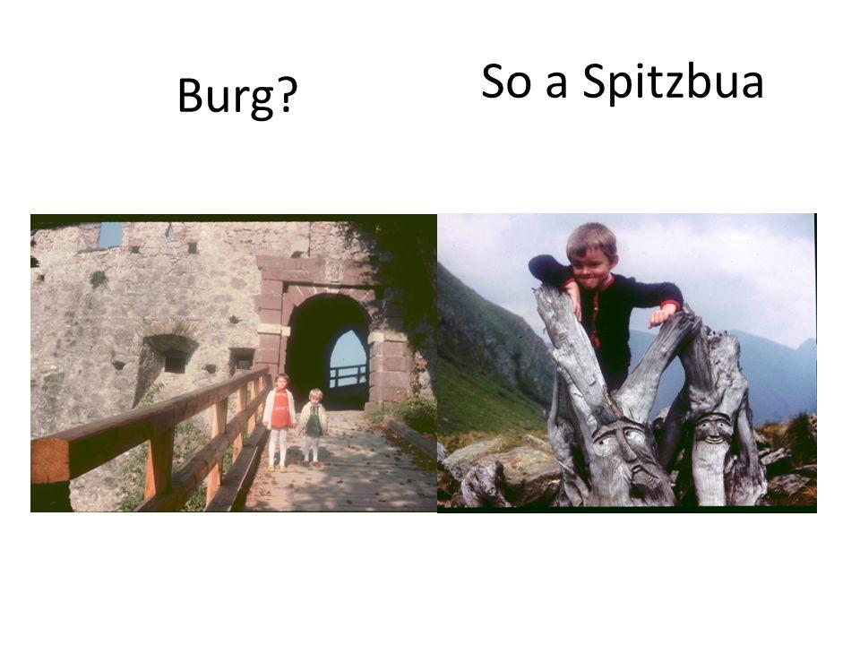 So a Spitzbua Burg?