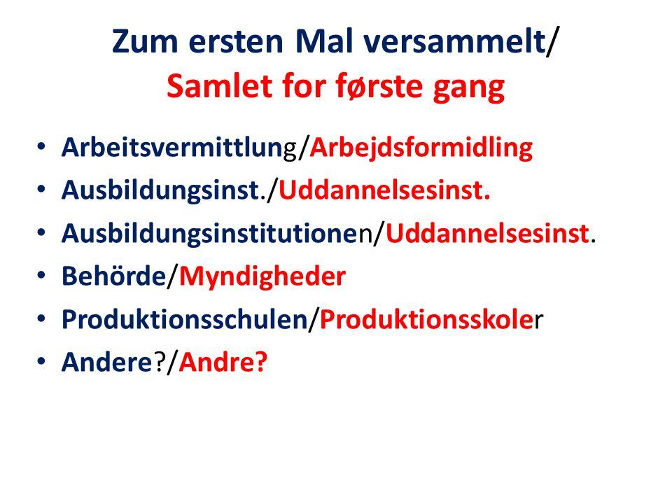 Zum ersten Mal versammelt/ Samlet for første gang Arbeitsvermittlung/Arbejdsformidling Ausbildungsinst./Uddannelsesinst.