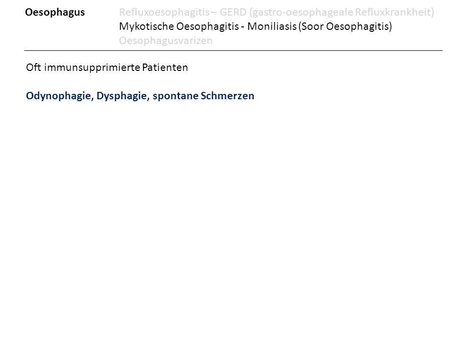 Oft immunsupprimierte Patienten Odynophagie, Dysphagie, spontane Schmerzen OesophagusRefluxoesophagitis – GERD (gastro-oesophageale Refluxkrankheit) M