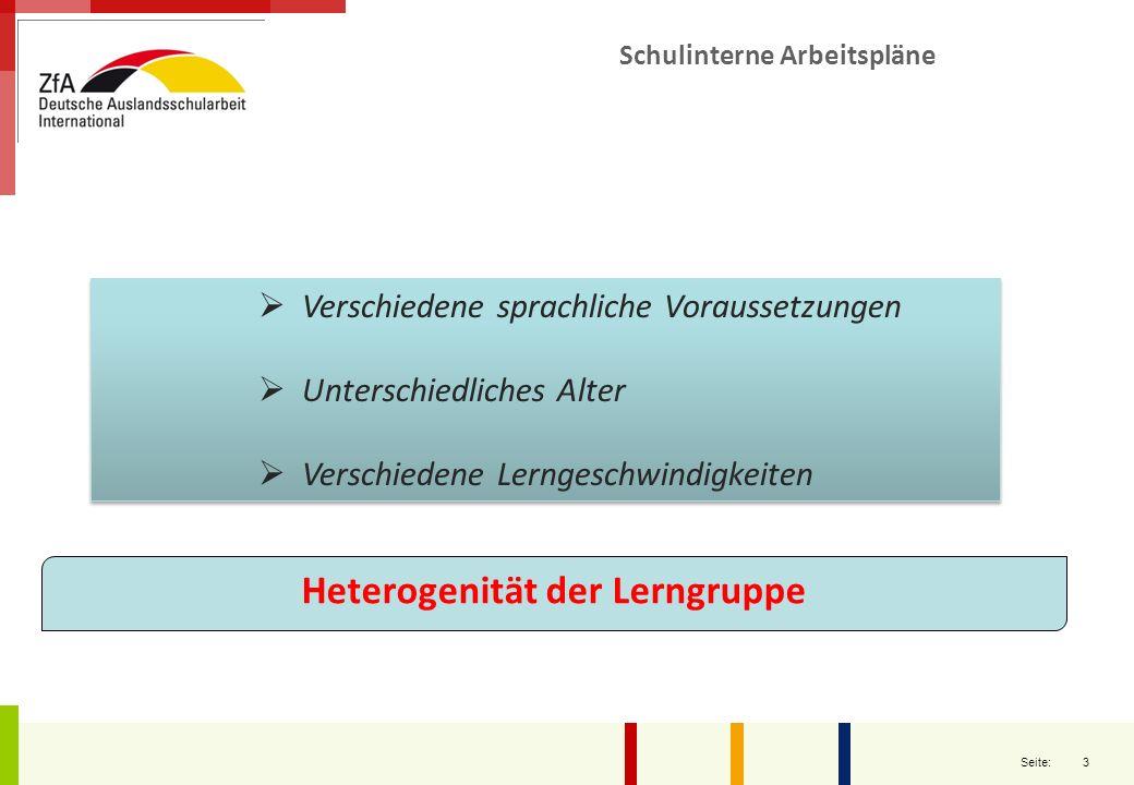 3 Seite: Verschiedene sprachliche Voraussetzungen Unterschiedliches Alter Verschiedene Lerngeschwindigkeiten Verschiedene sprachliche Voraussetzungen
