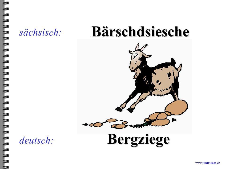funfriends www.funfriends.de deutsch: Färschdor sächsisch: Förster