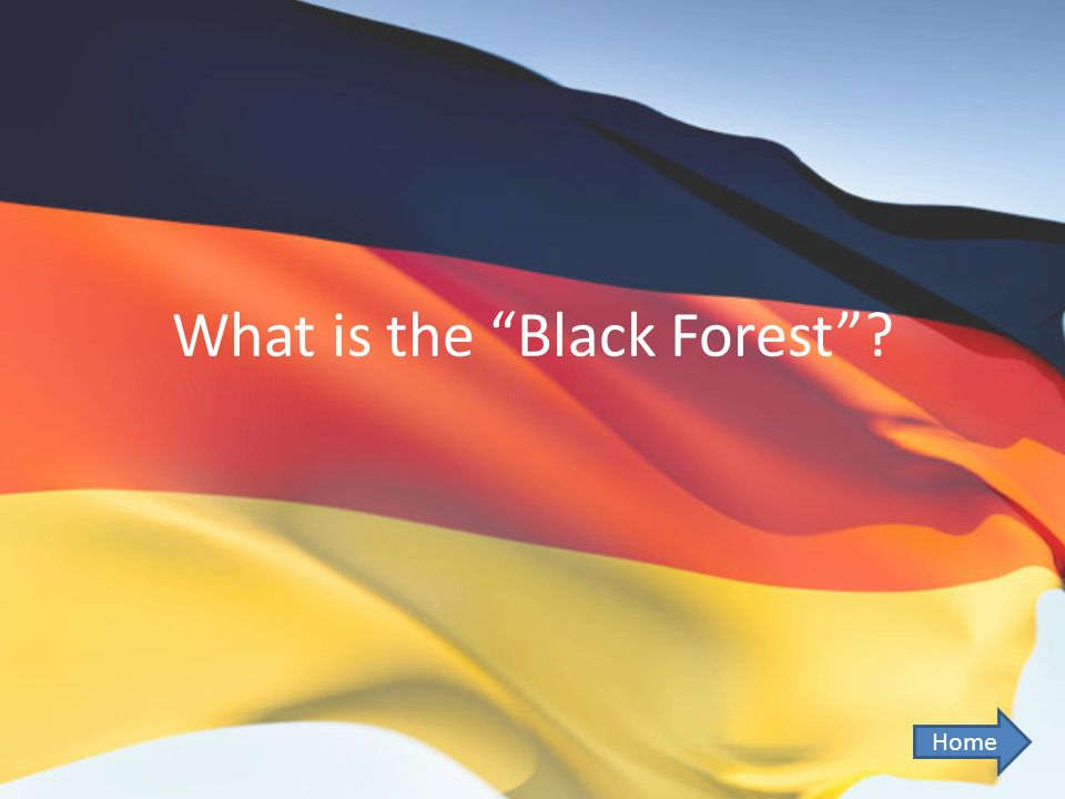 What is the Black Forest? Home