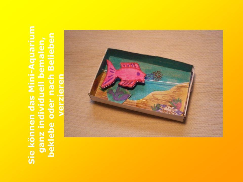 Sie können das Mini-Aquarium ganz individuell bemalen, beklebe oder nach Belieben verzieren