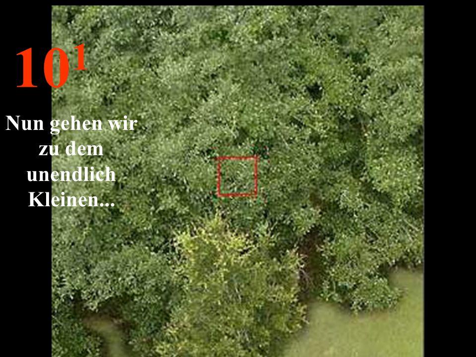 http://wissenschaft3000.wordpress.com/ 10 2