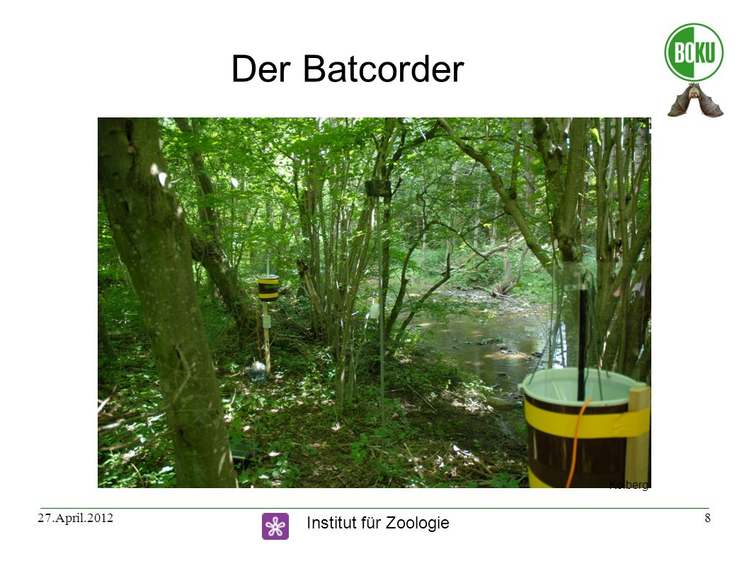 Institut für Zoologie 27.April.20128 Der Batcorder Kolberg