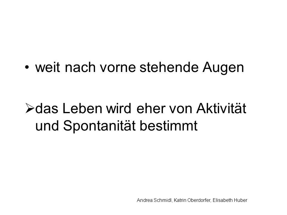 Andrea Schmidl, Katrin Oberdorfer, Elisabeth Huber weit nach vorne stehende Augen das Leben wird eher von Aktivität und Spontanität bestimmt