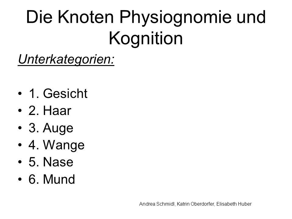 Andrea Schmidl, Katrin Oberdorfer, Elisabeth Huber Die Knoten Physiognomie und Kognition Unterkategorien: 1.