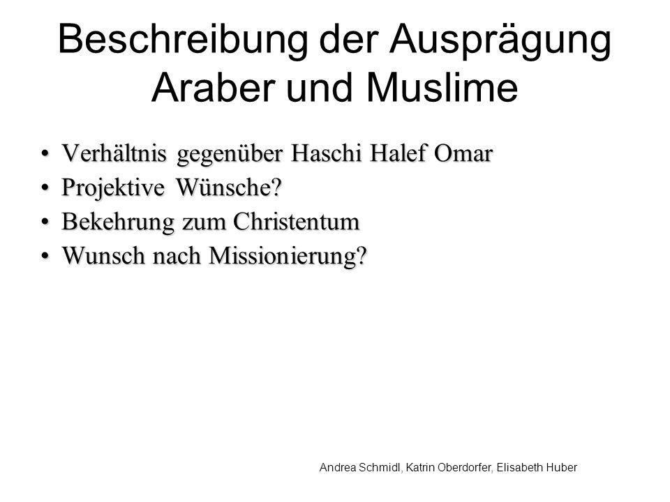 Andrea Schmidl, Katrin Oberdorfer, Elisabeth Huber Beschreibung der Ausprägung Araber und Muslime Verhältnis gegenüber Haschi Halef OmarVerhältnis gegenüber Haschi Halef Omar Projektive Wünsche?Projektive Wünsche.