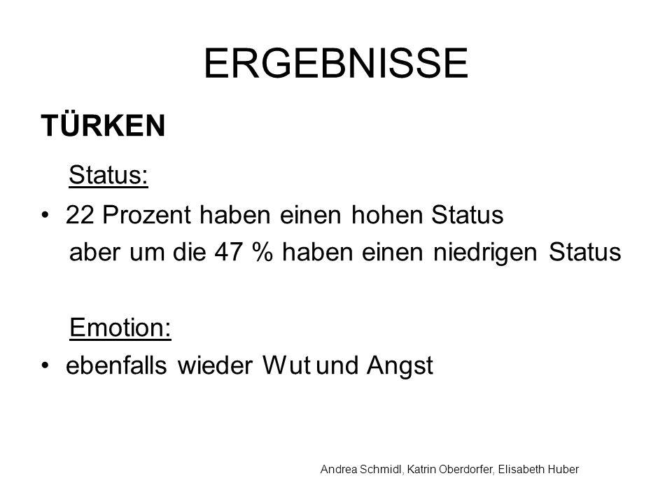 ERGEBNISSE TÜRKEN Status: 22 Prozent haben einen hohen Status aber um die 47 % haben einen niedrigen Status Emotion: ebenfalls wieder Wut und Angst