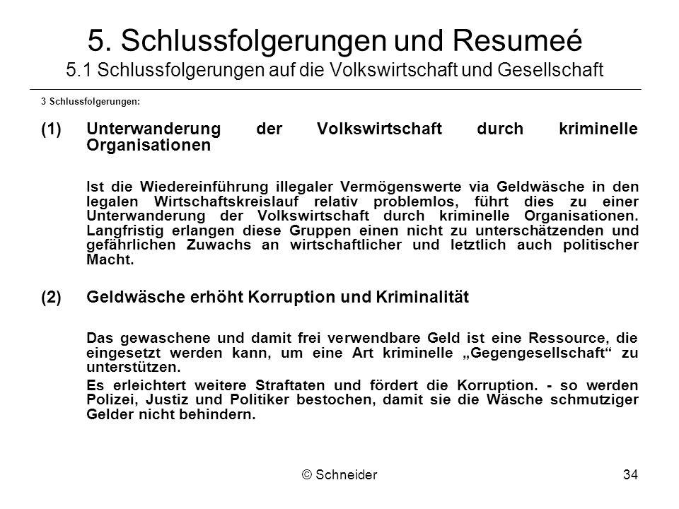 © Schneider34 5. Schlussfolgerungen und Resumeé 5.1 Schlussfolgerungen auf die Volkswirtschaft und Gesellschaft 3 Schlussfolgerungen: (1)Unterwanderun