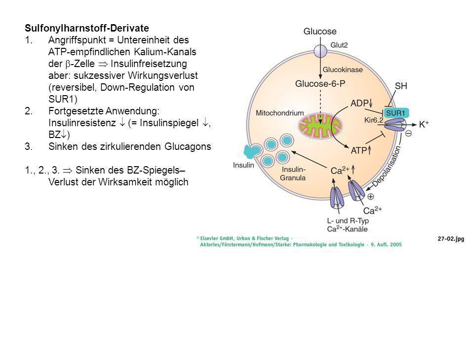 Sulfonylharnstoff-Derivate 1.Angriffspunkt = Untereinheit des ATP-empfindlichen Kalium-Kanals der -Zelle Insulinfreisetzung aber: sukzessiver Wirkungsverlust (reversibel, Down-Regulation von SUR1) 2.Fortgesetzte Anwendung: Insulinresistenz (= Insulinspiegel, BZ ) 3.Sinken des zirkulierenden Glucagons 1., 2., 3.