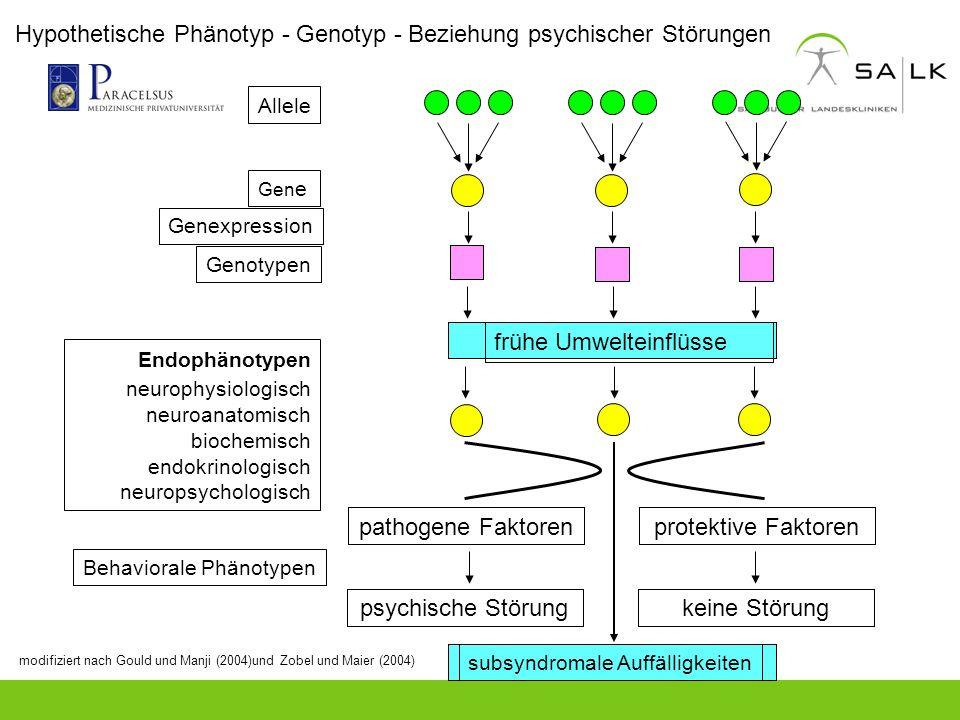 Hypothetische Phänotyp - Genotyp - Beziehung psychischer Störungen frühe Umwelteinflüsse Endophänotypen neurophysiologisch neuroanatomisch biochemisch