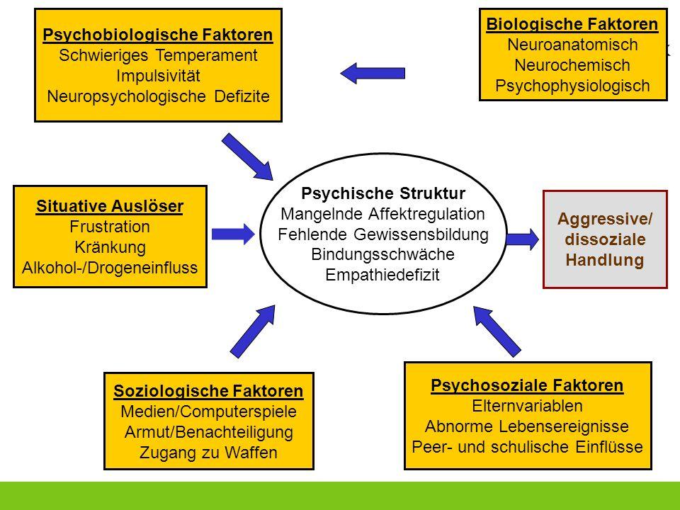 Psychische Struktur Mangelnde Affektregulation Fehlende Gewissensbildung Bindungsschwäche Empathiedefizit Aggressive/ dissoziale Handlung Soziologisch