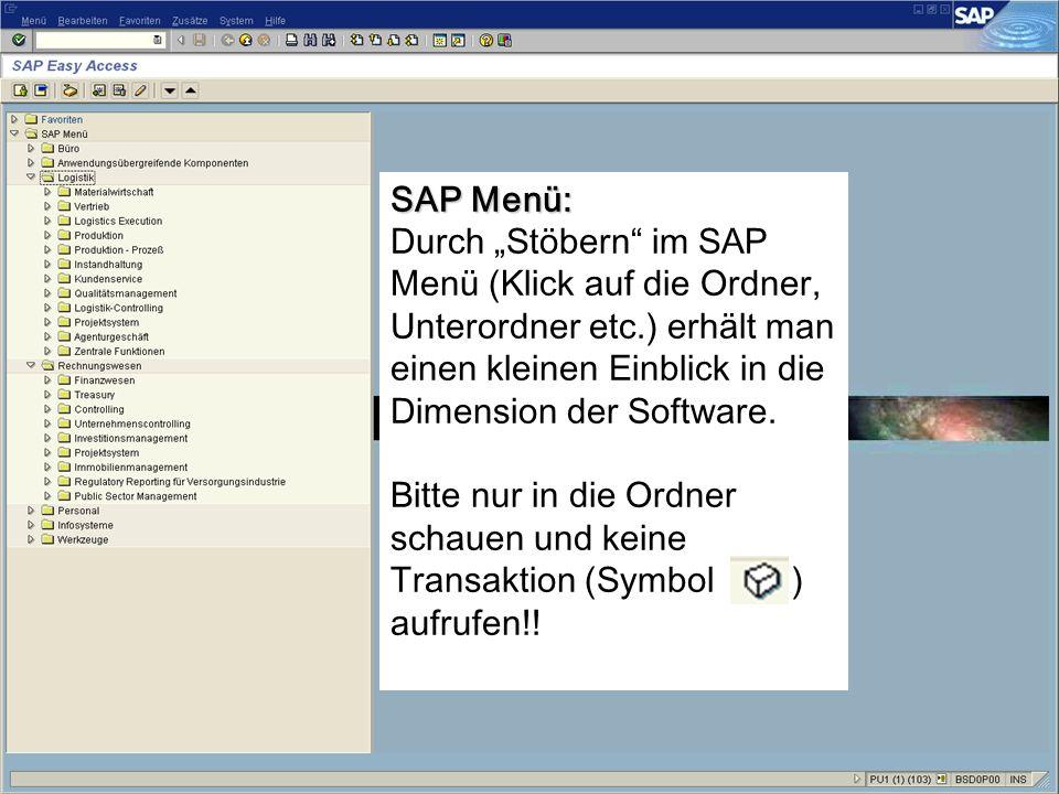 SAP Menü: Durch Stöbern im SAP Menü (Klick auf die Ordner, Unterordner etc.) erhält man einen kleinen Einblick in die Dimension der Software.
