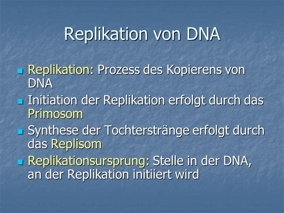 Replikation von DNA Replikation: Prozess des Kopierens von DNA Replikation: Prozess des Kopierens von DNA Initiation der Replikation erfolgt durch das