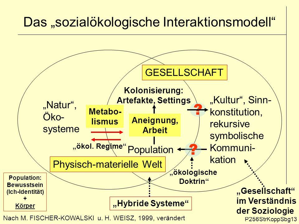 Das sozialökologische Interaktionsmodell P256StrKoppSbg13 Nach M. FISCHER-KOWALSKI u. H. WEISZ, 1999, verändert Kultur, Sinn- konstitution, rekursive