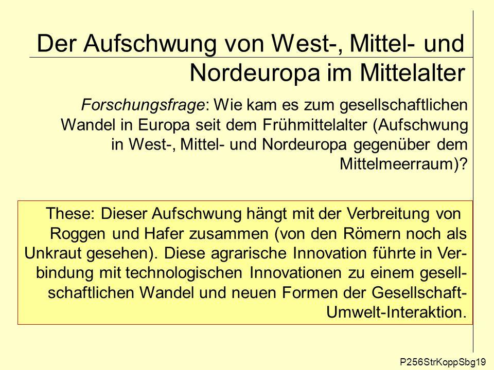 Der Aufschwung von West-, Mittel- und Nordeuropa im Mittelalter P256StrKoppSbg19 Forschungsfrage: Wie kam es zum gesellschaftlichen Wandel in Europa s