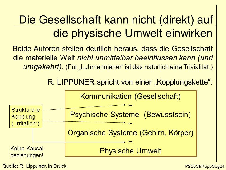 Die Gesellschaft kann nicht (direkt) auf die physische Umwelt einwirken P256StrKoppSbg04 Beide Autoren stellen deutlich heraus, dass die Gesellschaft