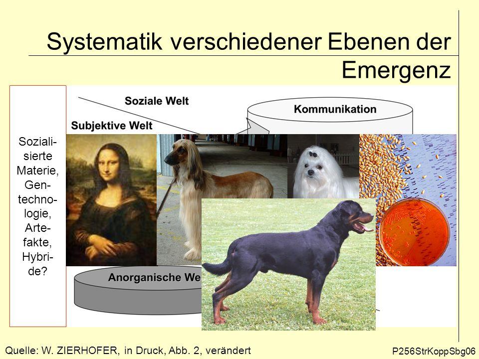 Systematik verschiedener Ebenen der Emergenz Quelle: W. ZIERHOFER, in Druck, Abb. 2, verändert P256StrKoppSbg06 Soziali- sierte Materie, Gen- techno-