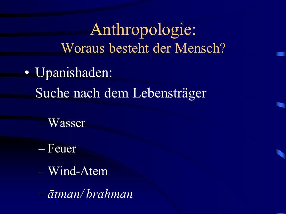 Anthropologie: Woraus besteht der Mensch.