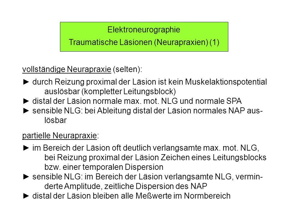 Elektroneurographie Traumatische Läsionen (Neurapraxien) (1) vollständige Neurapraxie (selten): durch Reizung proximal der Läsion ist kein Muskelaktio