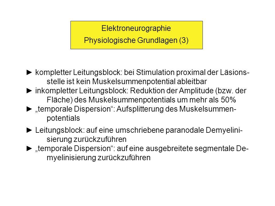 Elektroneurographie Physiologische Grundlagen (3) kompletter Leitungsblock: bei Stimulation proximal der Läsions- stelle ist kein Muskelsummenpotentia